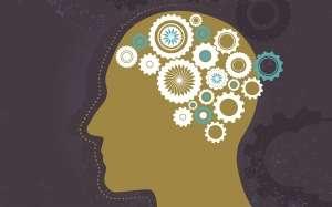Bilgi yüklemesinden korkmak gerekir mi?