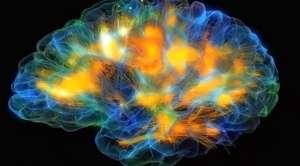 Egzersiz Beyin Hücrelerini Nasıl Canlandırır?