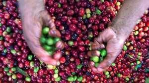 İklim değişikliği yediklerimizi nasıl etkileyecek?