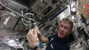 Uzayda Çırpılmış Yumurta Nasıl Yapılır?