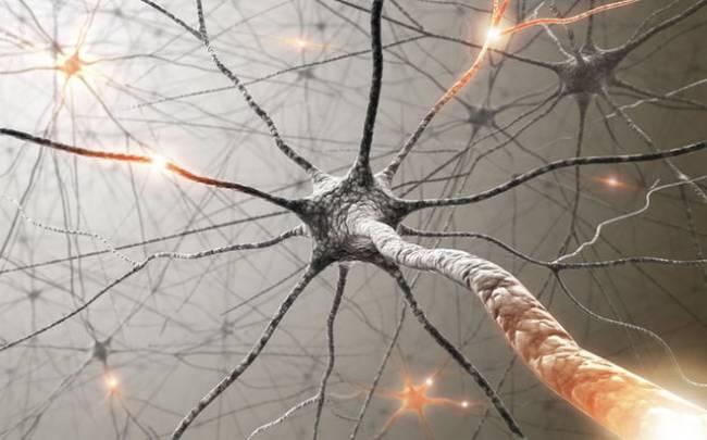 Yapay sinapslar sayesinde süper bilgisayarlar insan beynini taklit edebilir mi?