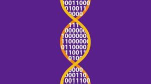 Microsoft DNA'ya 200 MB Veri Kaydetti