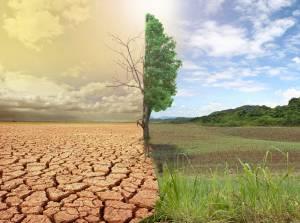 Küresel ısınma göstergeleri rekor seviyede
