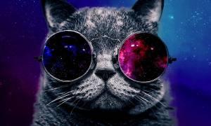 Schrödinger'in Kedisi Davranışı Atomlarda İlk Defa Görüntülendi
