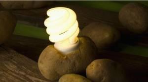 Patatesle dünyayı aydınlatmak