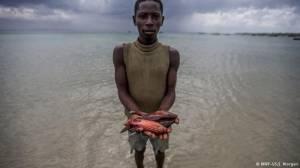 Milyonlarca insan balık yiyemeyecek
