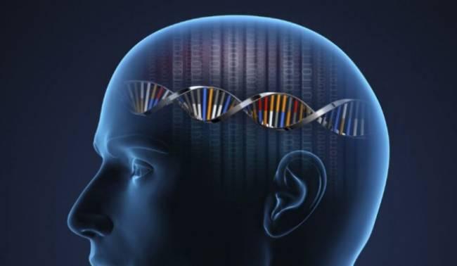 Şizofreni ile İlişkilendirilen Yeni Bir Gen Keşfedildi
