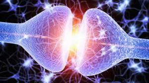 Uyku Hafızamızı Nasıl Güçlendirir?