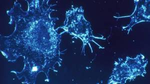 Kanser Mutasyonlarının Üçte İkisi Rastgele Meydana Geliyor