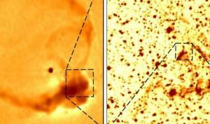 Kökeni net olarak belirlenemeyen kalsiyum dolu nadir bir yıldız keşfedildi