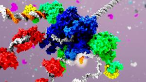 Kanser Tedavisinde Yeni Bir Hücresel Yaklaşım: Replizomun Hedeflenmesi