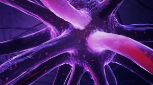 Bilim İnsanları Yepyeni Bir Nöron Çeşidi Keşfettiler