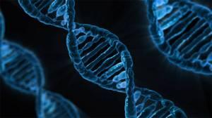Bilim insanları ilk kez canlı hücrelere video yüklemeyi başardı