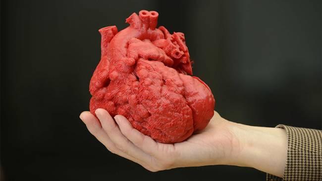 3D Biyoyazıcı Teknolojisi ile Doku ve Organ Üretimi